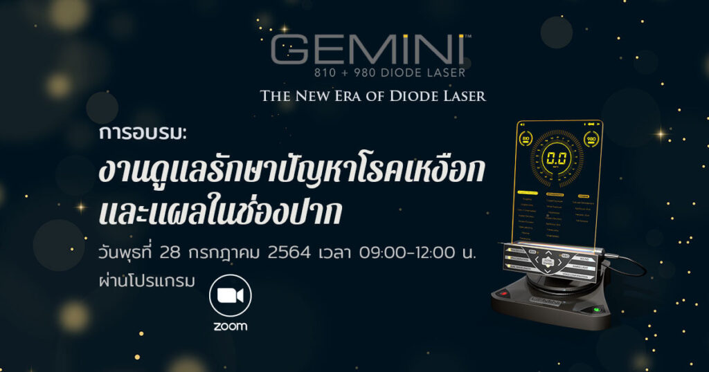สัมมนา Gemini Laser